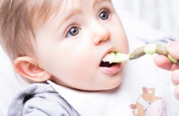Impact de la pasteurisation et de l'homogénéisation sur la digestion du lait maternel chez le nouveau-né
