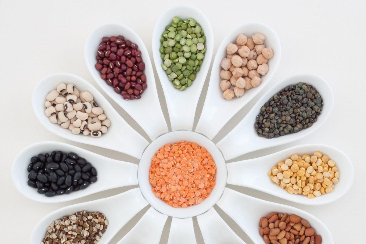 Nouvelles sources de protéines